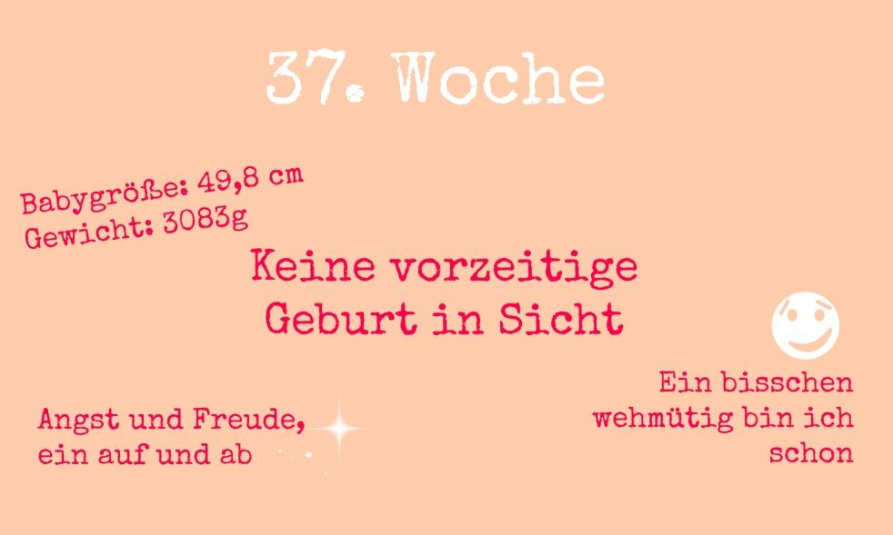 37ssw